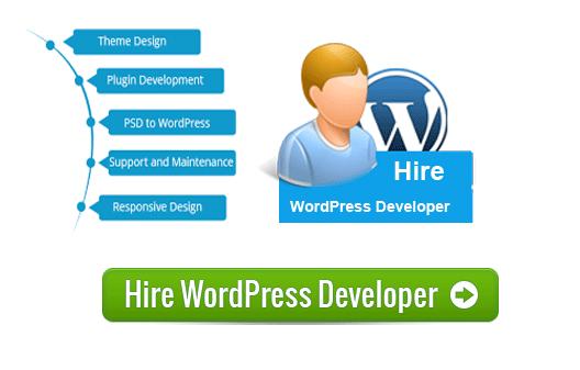 hire-wordpress-developer-ahmedabad